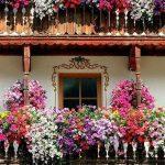 Ideas-decoracion-con-flores_24